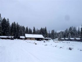 Deer Haven Lodge Cabins Big Horn Mountains WY