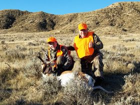 guided pronghorn antelope hunts wyoming outfitters